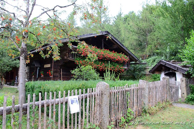 Bavarian Forest House