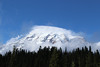 Mt. Rainier by Sara Shroyer
