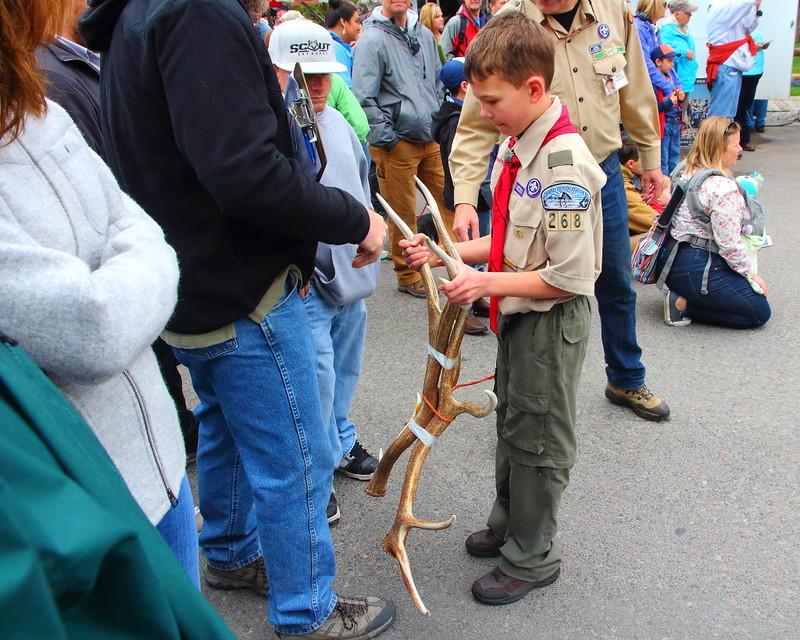 IMG_7915 Elk Antler Auction
