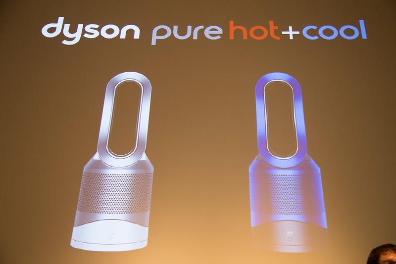 Dyson1006-21