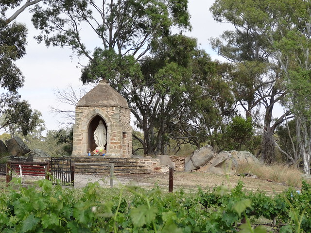 Clare Valley. The Marian Shrine at Sevenhill winery, church and seminary complex with grape vines in front of it. This was converted from Weickerts smoke house to a shrine in the 1950s.