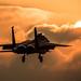 Eagle Sunset by Steve Cooke-SRAviation