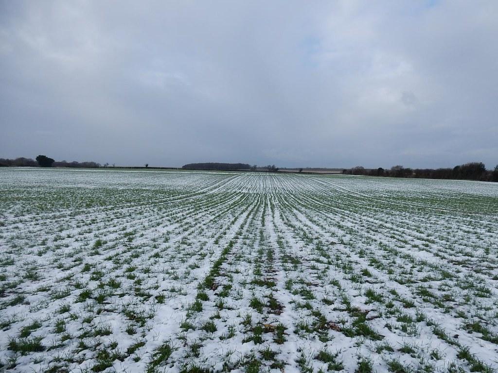 White lines Lenham to Charing