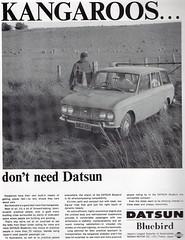 Datsun Bluebird Wagon (1965)