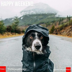 Happy Weekend. . .  @Regrann from @thinkpositivegr -  #weekend - #regrann