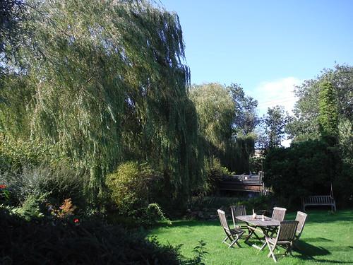 Tisbury Mill Garden