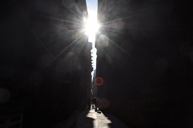 barca_barrigotic_steeg_zon