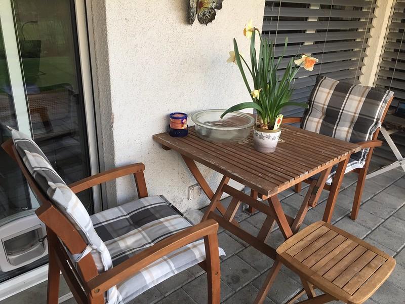 Temporary back garden