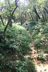 10:45 - 續行稜線往東(往南港山東峰)
