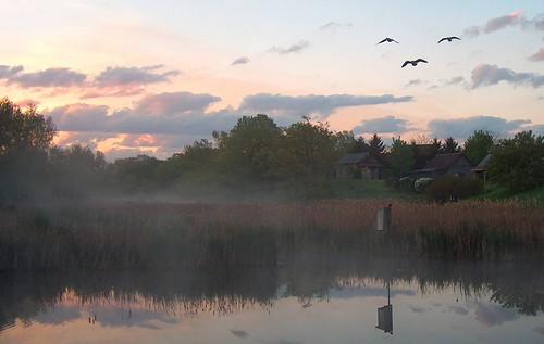 morning nature wisconsin sunrise river outdoors wildlife