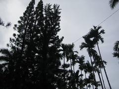 20060718 Saipan 338