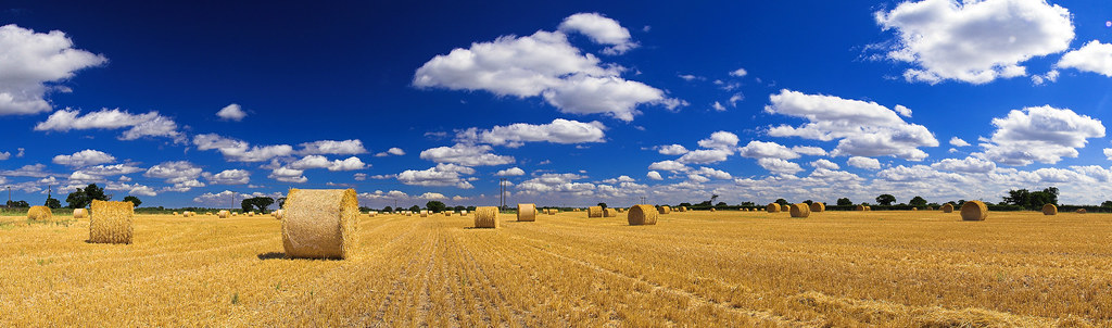 Hay Bales - Full Panoramic