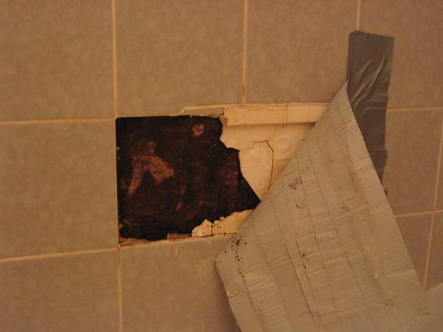 Black mold in my shower flickr photo sharing - Black mold in bathroom wall ...