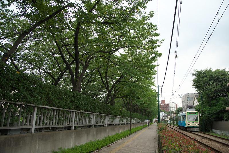 Tokyo Train Story 都電荒川線 2015年9月3日