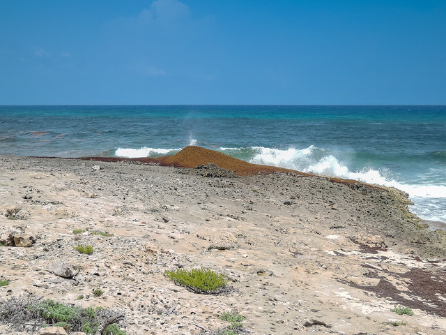 Punta sur Cozumel Mexico