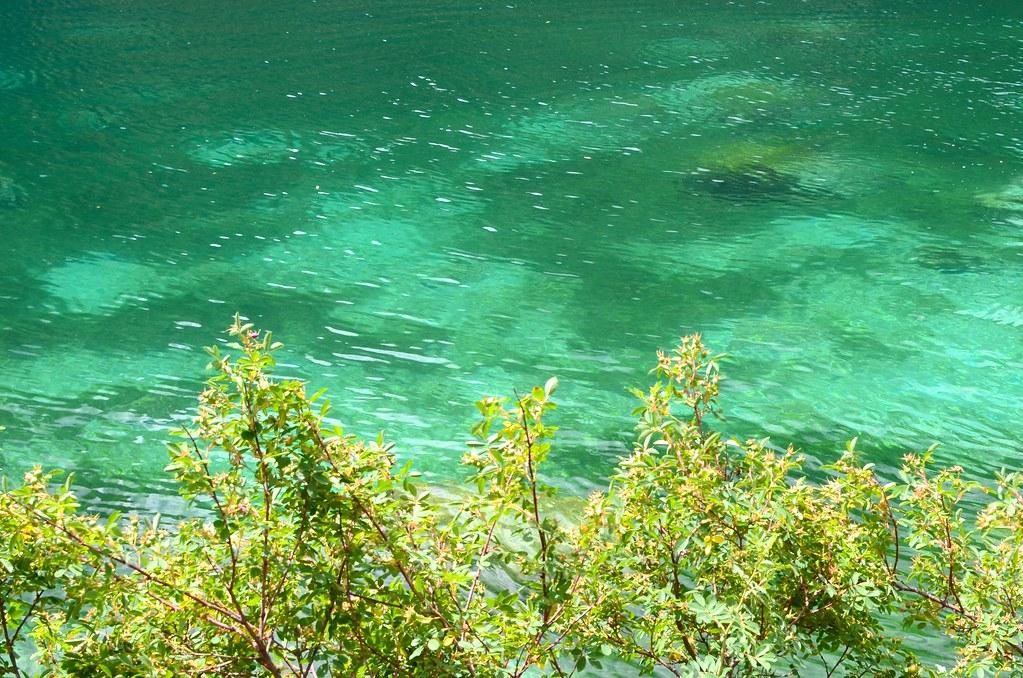 Pavilion Lake Stromatolites