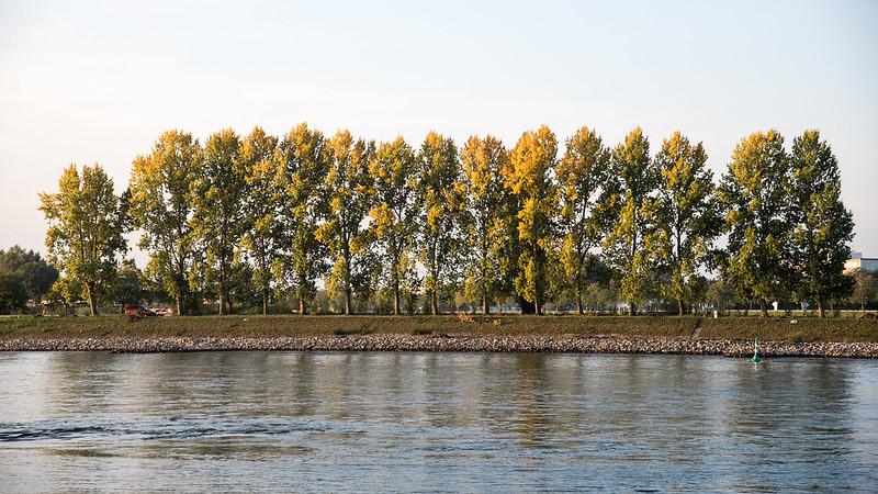 Der Herbst zeigt sich