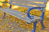 Autumn Leaves Bench by ~DGH~