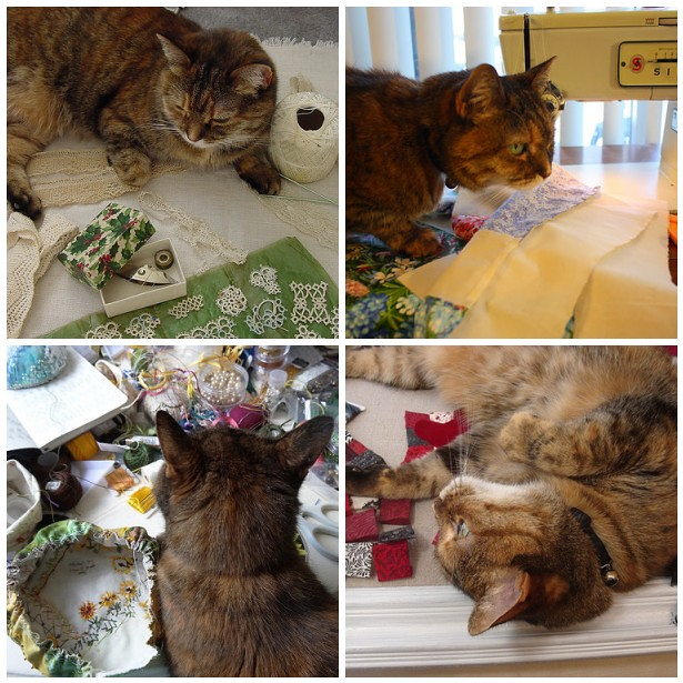 """Mollie """"Helping"""" Me Sew"""