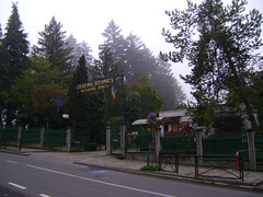 cluj-grădina botanică/botanical garden cluj