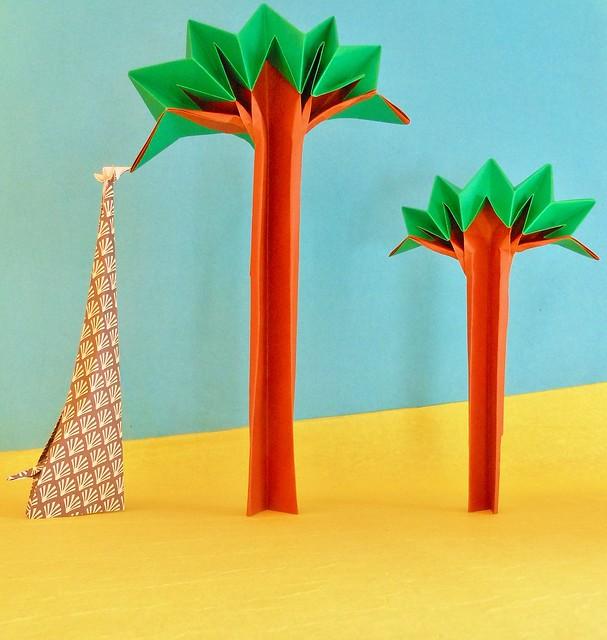 Arbre girafe Giraffe tree, Nikon COOLPIX S6100