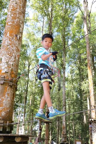 Treetop Adventure Park