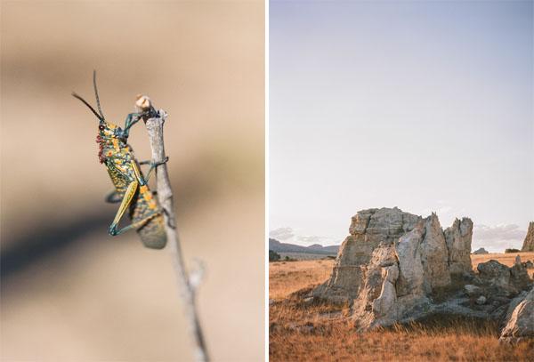 RYALE_Madagascar_Blog1_023