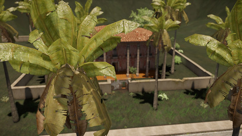 Trespasser Palms