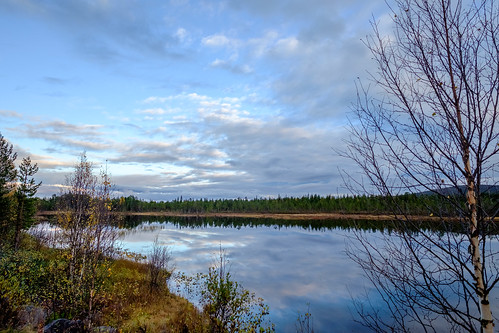 autumn lake reflections se evening sweden outdoor lappland lapland birch sverige scandinavia biketouring sápmi norrbottenslän svappavaara xf14mmf28r xf14mm fujinonxf14mmf28r fujifilmxt10