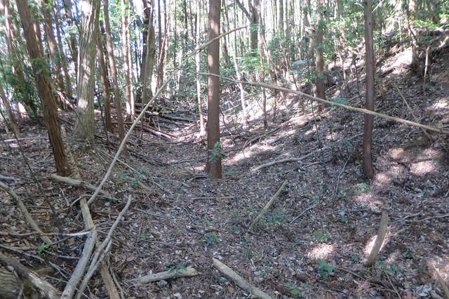 長辺寺古墳南方の古道痕跡