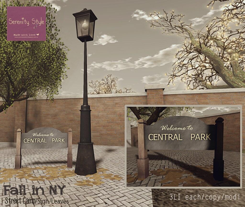 Serenity Style- Fall in NY