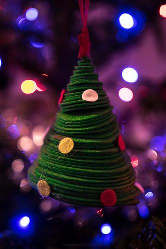 A tree on a tree // 18 12 15