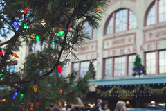 my pike place market edible gift guide