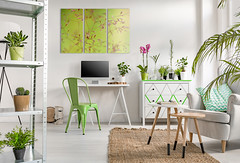 Pantone Greenery Home Decor Canva In Colour Of The Year Flickr