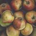 Strange Fruit by jerryms
