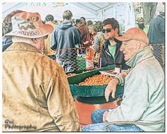 Kumquat Discussion 2017 Kumquat Festival