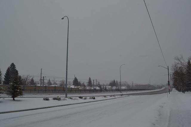 Winter in Calgary, February 2017 (3)