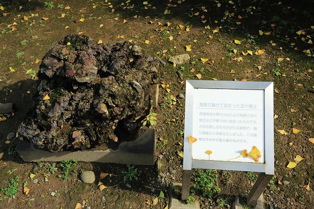 D3_熊本城19