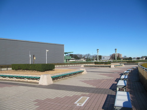 中山競馬場の内馬場投票所の屋上