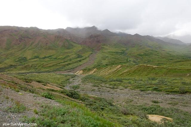 denali_terrain_web