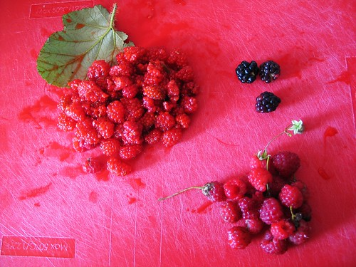 Foraged salmonberries, raspberries and brambles
