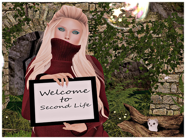 Welcome to Second Life