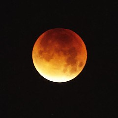 event, moon, lunar eclipse, full moon, celestial event, circle, astronomical object,