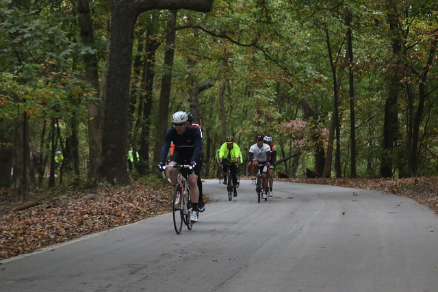 Tour de Wildwood - visit the Rockwood Reservation, Babler State Park, and many other scenic areas in Wildwood