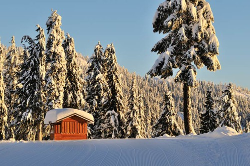 Mount Seymour, Ski Resort, North Vancouver BC, British Columbia