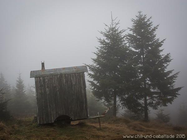 Hexenhäuschen im Nebelwald