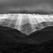 Ridges and Rays by Matt Williams Gallery