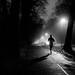on the run by Dan-Schneider
