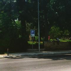 #summer #city #Nicosia