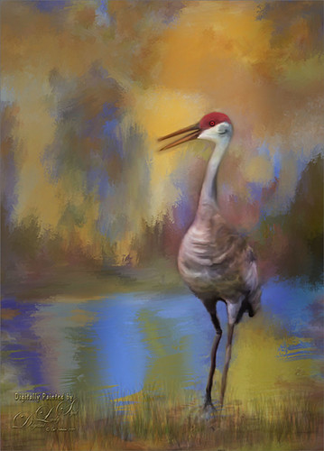 Image of a Sandhill Crane on a painted texture. height=